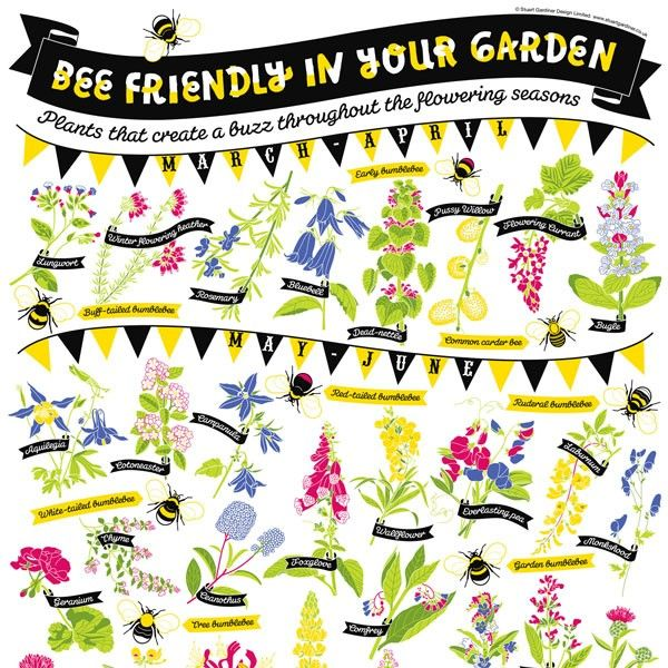 Bee Garden Guide. What A Great Way To Invite Bees Into Your Garden!