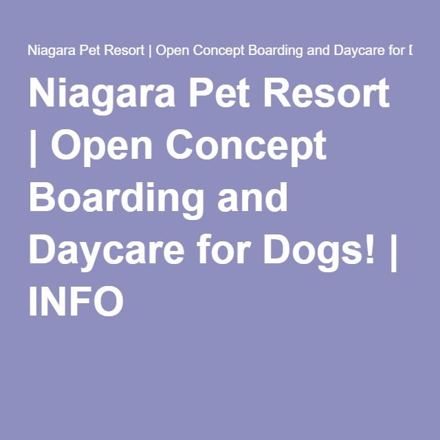 Niagara Pet Resort | Open Concept Boarding and Daycare for Dogs! | INFO