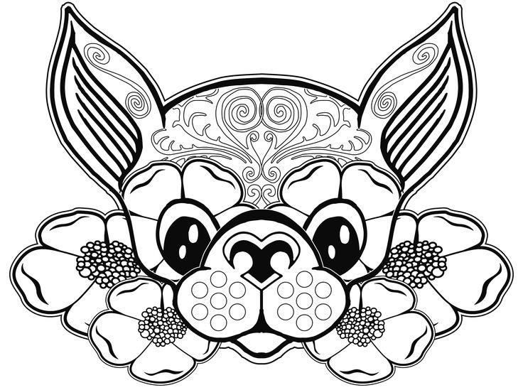 11782 best coloring pages images on pinterest drawings coloring