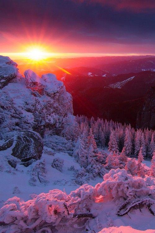 sundxwn: Red code by Lazar Ovidiu