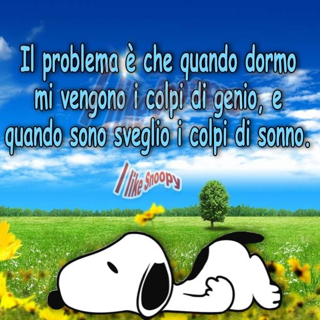 Charles Monroe Schulz charlie brown lucy lycy nonna peanuts sally Schroder snoopy woodstock