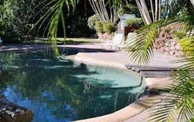 Love the tropical pool  www.montvilleinn.com.au