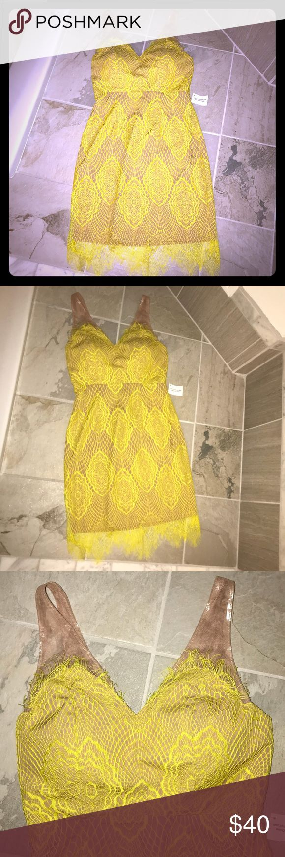 NEW eyelash lace neon yellow dress with nude slip Brand new and never worn. Beautiful lemon drop yellow eyelash lace dress with wispy fringe. Nude underlay slip with nude mesh peek a boo straps. Zip up back and padded bust so no bra is required. This is marked a size small. I believe it will fit a size 0-3 or a size 1. I am a size 34ddd bust and this fits fit in waist but a bit tight in bust. Not For love and lemons but definitely has that delicate vibe. Last photo for styling purposes only…