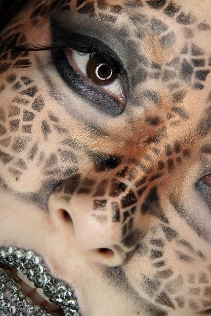 animal for halloween leopard make up beauty pinterest lace makeup creativity. Black Bedroom Furniture Sets. Home Design Ideas