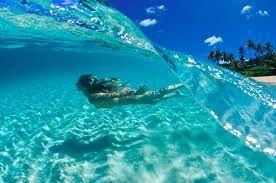 bajo el agua - Buscar con Google