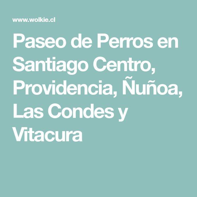 Paseo de Perros en Santiago Centro, Providencia, Ñuñoa, Las Condes y Vitacura