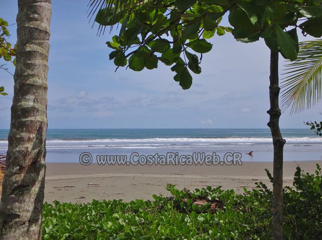 Linda Beach Costa Rica in Savegre, Aguirre, Puntarenas: information, location, address map, GPS coordinates, photos, video, how to get there by bus or airplane.