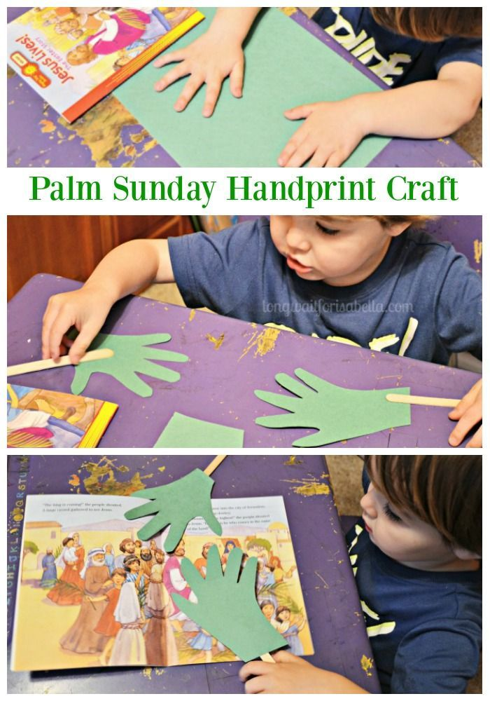 palm sunday crafts 17 best images about sunday school crafts amp decor on 2605