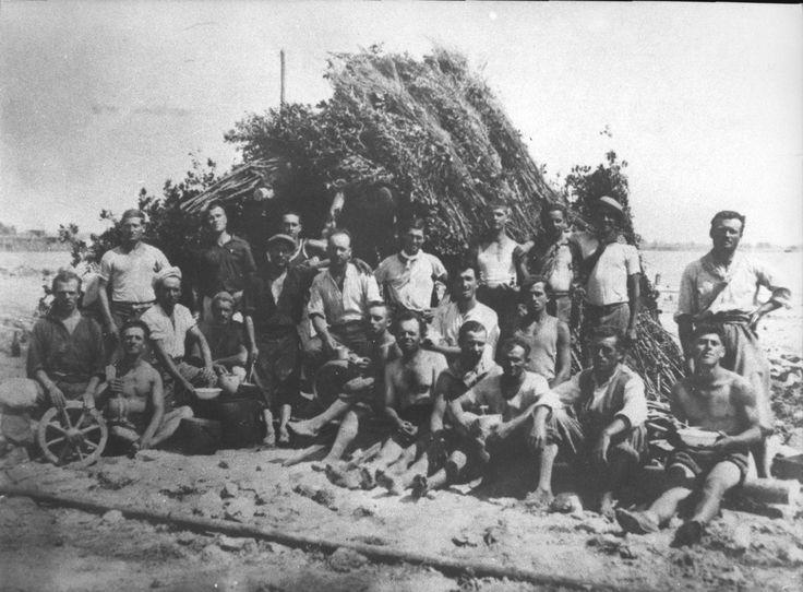 Lavori di prosciugamento nelle Paludi Pontine, anni 1930