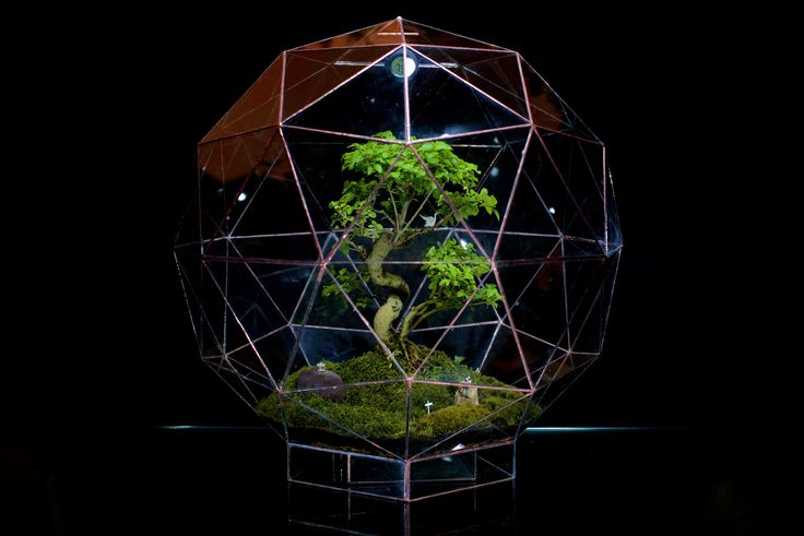 Pentakis Dodecahedron (Large) by Angles & Earth