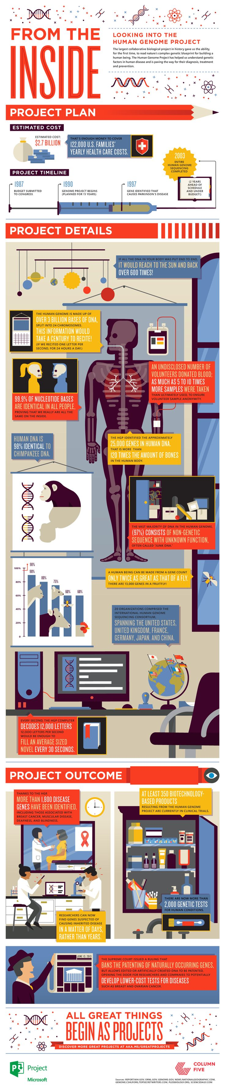 Human Genome Project infographic