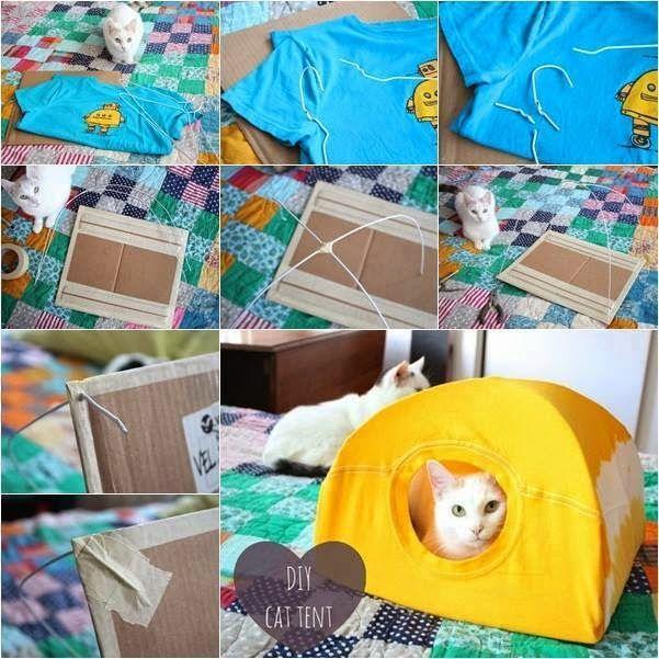 Creative Idea For Your Cat   DIY Cat Tent   Goods Home Design. 69 best Diy Ideas images on Pinterest
