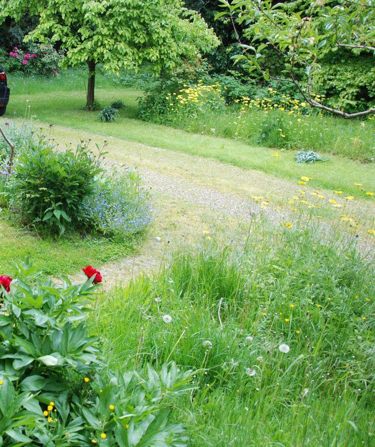 1000 id es propos de vinaigre des mauvaises herbes sur pinterest d sherbant au vinaigre - Tuer les mauvaises herbes javel ...
