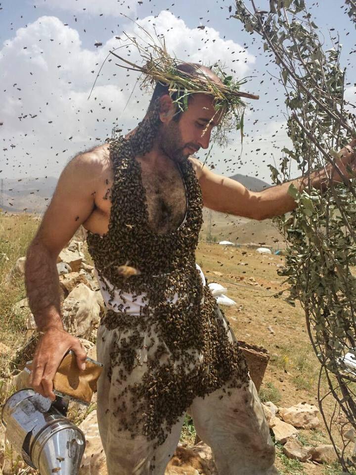 Van'ın  Çatak ilçesinde arıcılık yapan Abdulvahap Semo, Guinness Rekorlar Kitabı'na girebilmek için üzerine binlerce arı çekti.