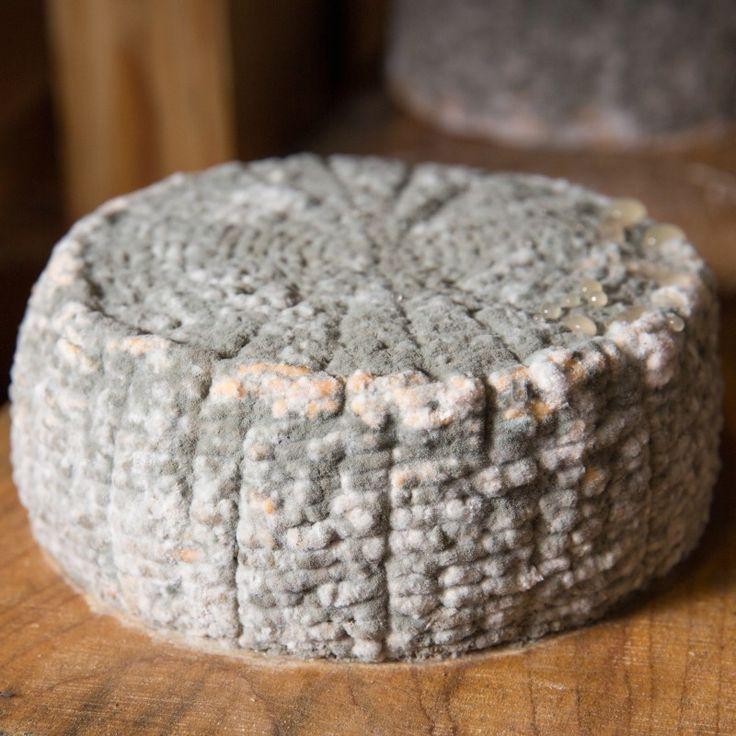 """М'який сир з козиного молока з цвіллю """"Капрінос"""""""