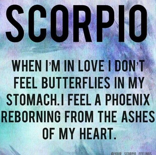 love will burn up again