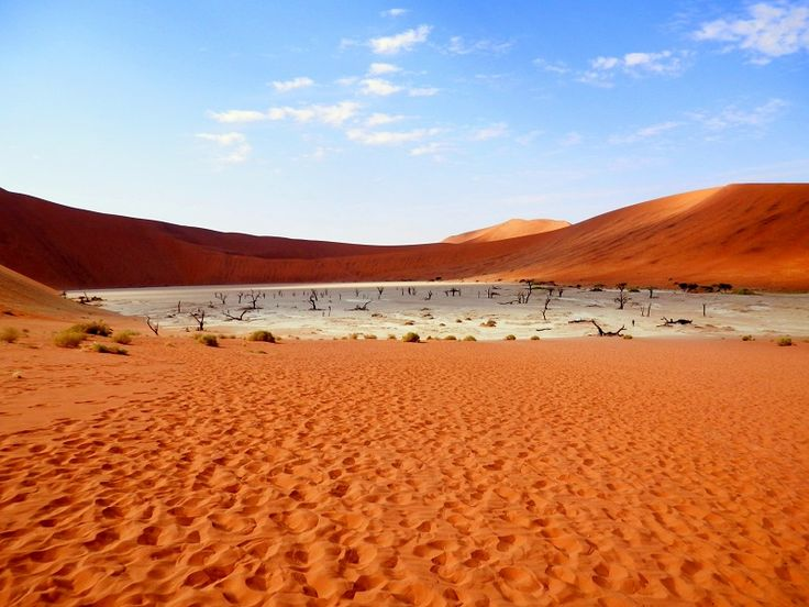 Sossusvlei, a salt pan - is surrounded by some of the highest dunes in the world.  This shot was taken in the Namib-Naukluft National Park of #Namibia #Africa