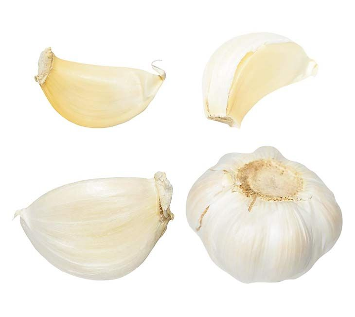 Garlic for vaginal Yeast Infection  #candida #vagina #woman #womanissues #infections #yeastinfection  #homeremedies #DIY https://ambrossimo.com/vaginal-yeast-infections-treatments/