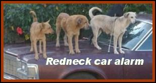 Here is a page full of good redneck jokes...Ya'll enjoy em