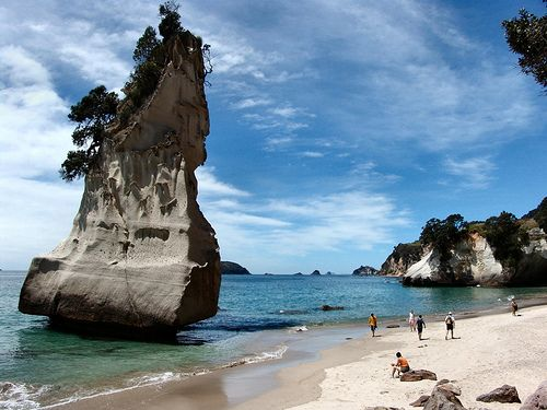 22 Interesting Facts About New Zealand