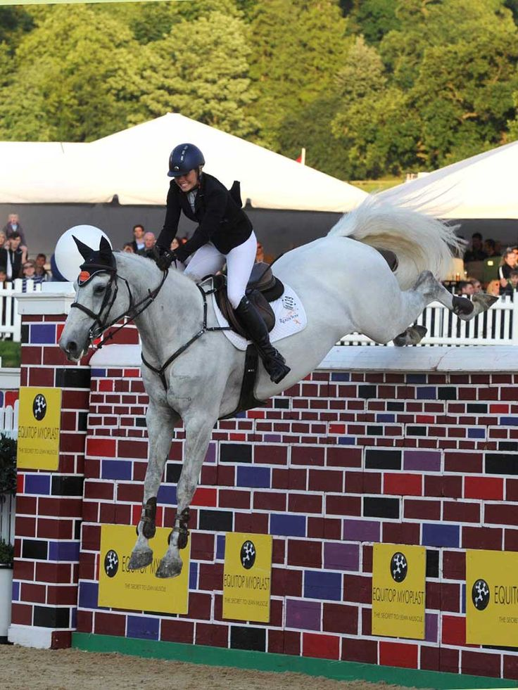 Equi-Ads just posted this... Puissance Spectacular at Bolesworth International