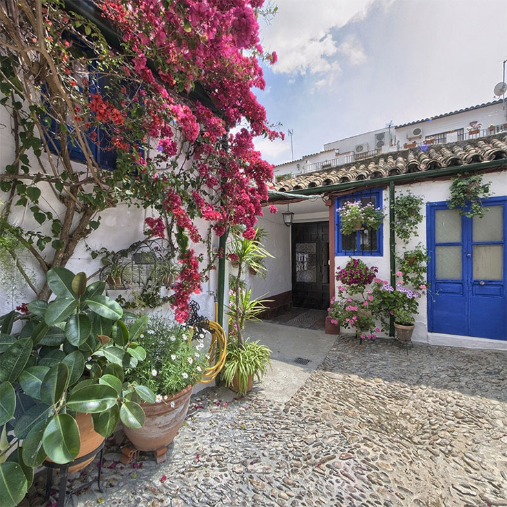 90 best images about patios de cordoba on pinterest popular labor and spanish style - Casas marroquies ...