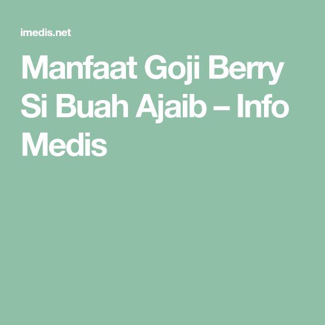 Manfaat Goji Berry Si Buah Ajaib – Info Medis