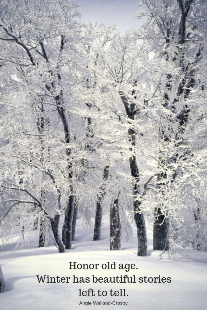 Winter Quotes To Make The Soul Sparkle Soul Quotes Winter Quotes Snow Quotes