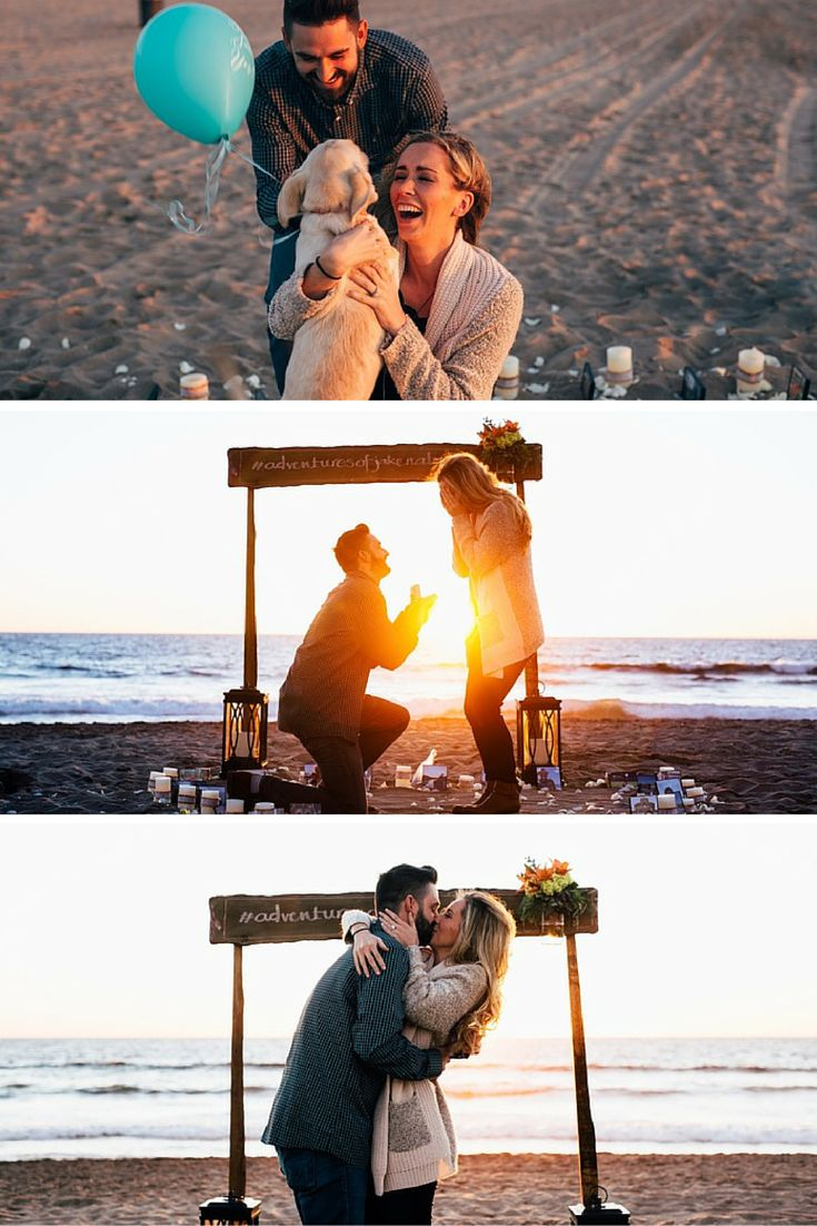 He proposed on the beach with the help of the cutest puppy! This guy really thought of everything, and the video is just perfect. <3