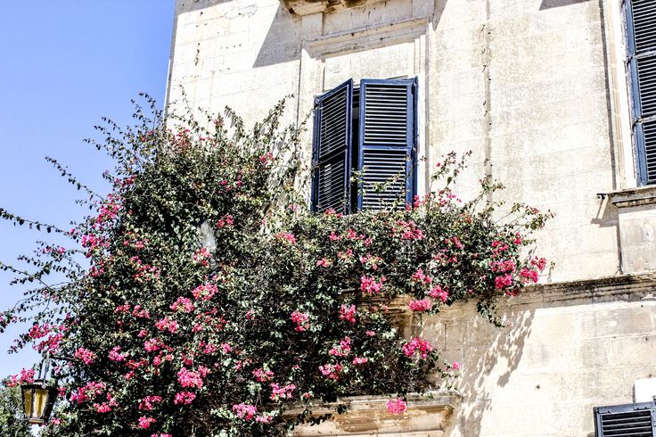 Flowers at a window in Medina, Malta.