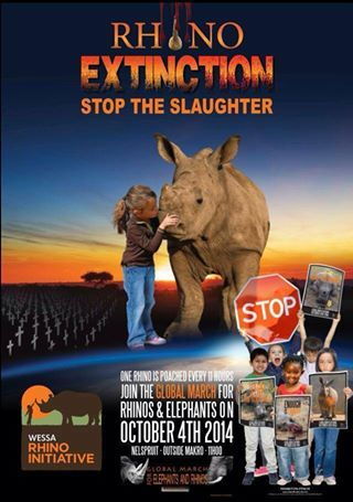 South Africa has lost close to 600 rhinos this year. 100 elephants are poached every day across the African continent. Join the Global March for Elephants and Rhinos on October 4th 2014 across the globe. For those of you here in the Lowveld, the march will take place in Nelspruit and starts at 11am in front of Makro. If you are situated elsewhere, please check on www.march4elephantsandrhinos.org for your closest city. Please share and spread the word so the world can see that enough is…