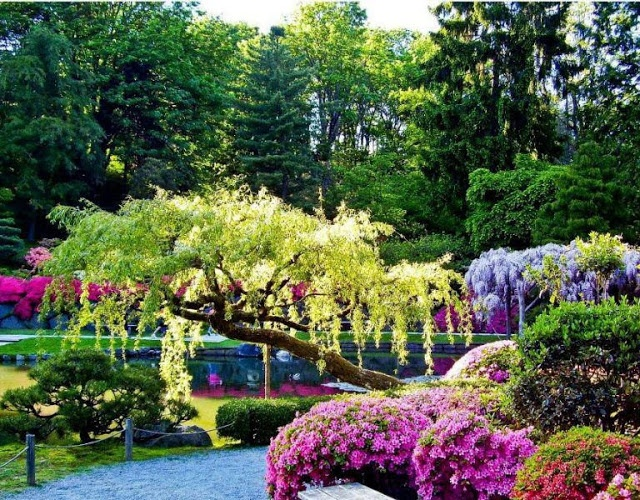 222 best Lovely Garden images on Pinterest Landscaping