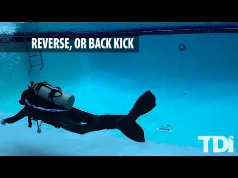 Diving Fundamentals: Scuba Finning Techniques • Scuba Diver Life