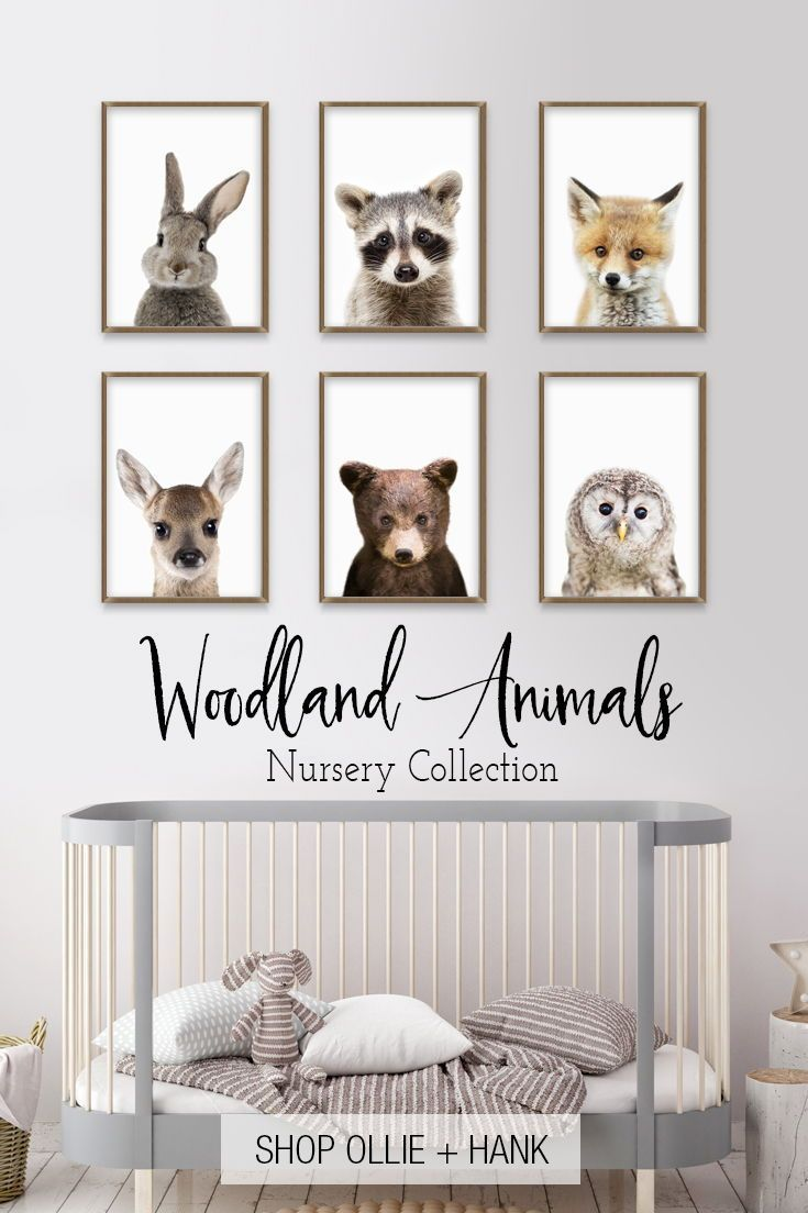 Woodland Nursery Decor | PeekABoo Woodland Animals Collection – Baby