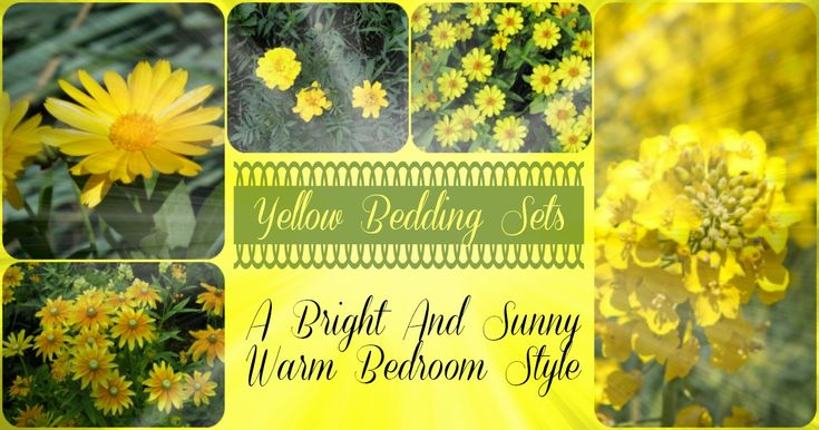Yellow bedding sets are bright and sunny choice for bedroom decor. Many beautiful yellow bedding sets prints, bold yellow stripes, and lovely floral prints.