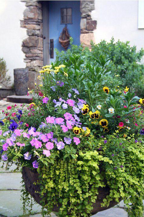 Springtime planter...