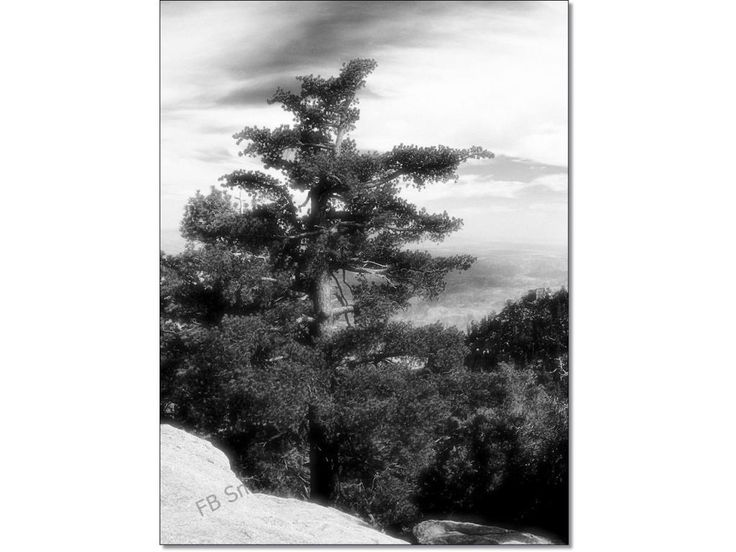 Infrared Style Giclee Fine Art  Print Photo Prints 5x7 Mountain Palm Springs California