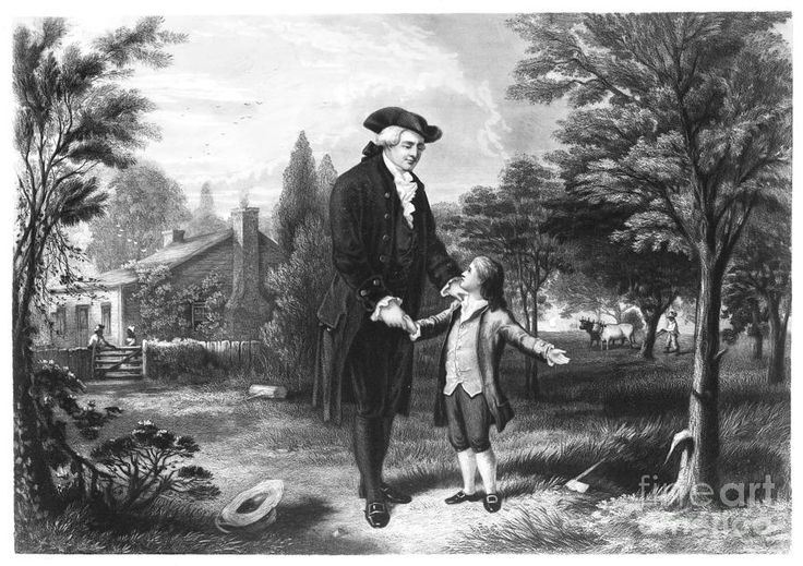 biography of george washington the first president of the united states of america American president: a reference resource this site from the miller center at   potus: presidents of the united states biographies of the presidents  george  washington papers this library of congress web site maintains  prologue  looks at the sides of the first president's life that we do not often see.