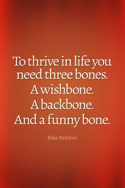 Day by day Knowledge Quote: To Thrive In Life You Want Three Bones…