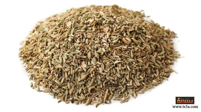 كيف تنتفع بعشبة عين الجرادة أو الشبت وما طريقة التداوي بها Https Www Ts3a Com D8 B9 D9 8a D9 86 D8 A7 D9 84 D8 Ac D8 B1 D8 How To Dry Basil Herbs Basil