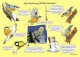 Co dělají zvířata v zimě - 1