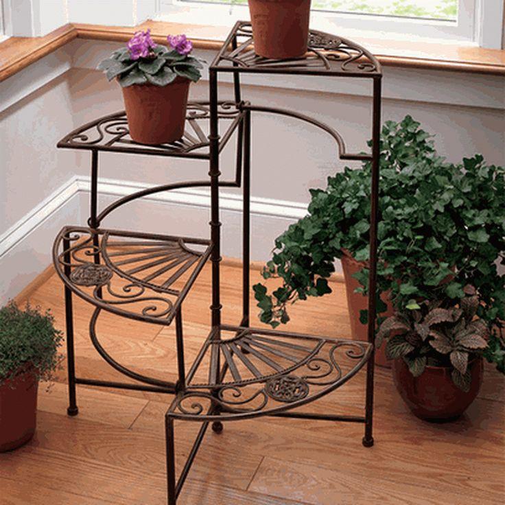16 besten gardening house plants bilder auf pinterest - Coole zimmerpflanzen ...
