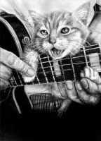 Cat playing Guitar by Yankeestyle94