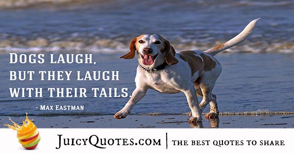 Quotes About Dogs - 39