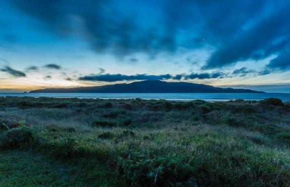 Tall Poppy Real Estate - Paraparaumu Beach