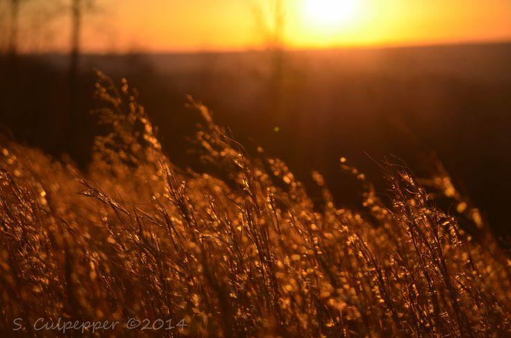 sunset in Mentone