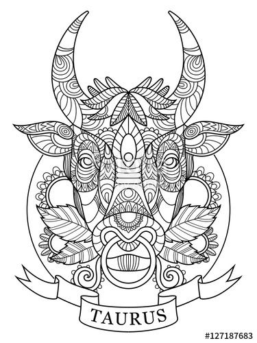 Taurus zodiac sign coloring page for adults | Fotolia 127187683