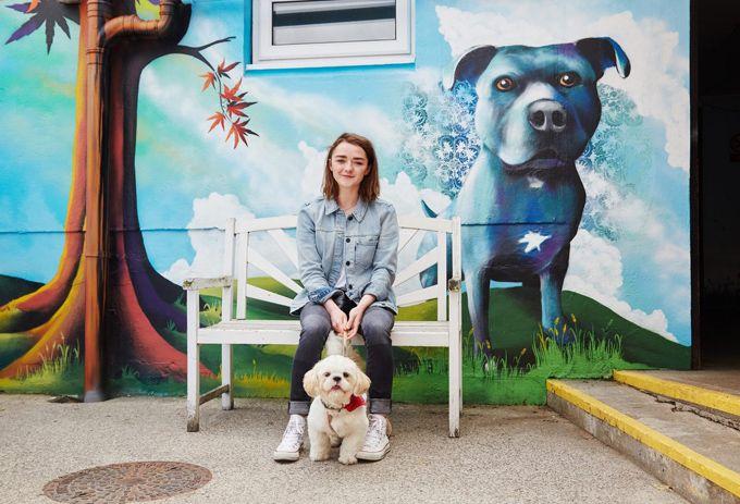 Мэйси Уильямс в Pet Collective (Интернет-журнал ETODAY)