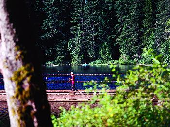 17 Best Images About Pdx Parks On Pinterest Parks