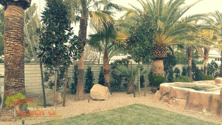 Why Should You Hire A Las Vegas #Landscaper? http://bit.ly/1KkbXbr